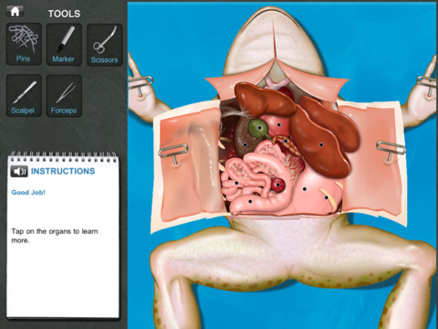 Frog Disection iPad App