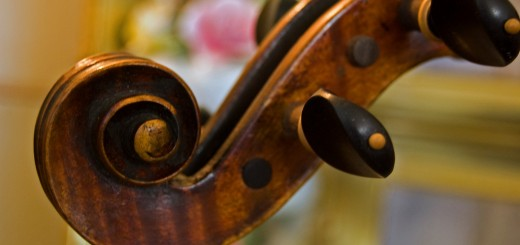 violin music instrument