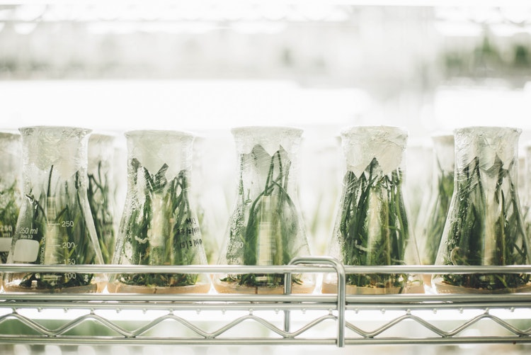 Efforts to grow biotech are paying off, India positioned as key global player