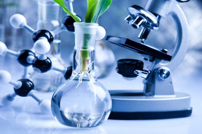 Dept. of Biotechnology Holds Roundtable in Berlin to Showcase India's Research Potential