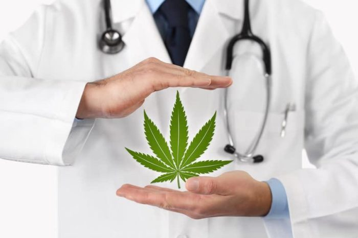 The Misunderstood Drug: Conference to Promote Medical Use of Cannabis Held in Delhi