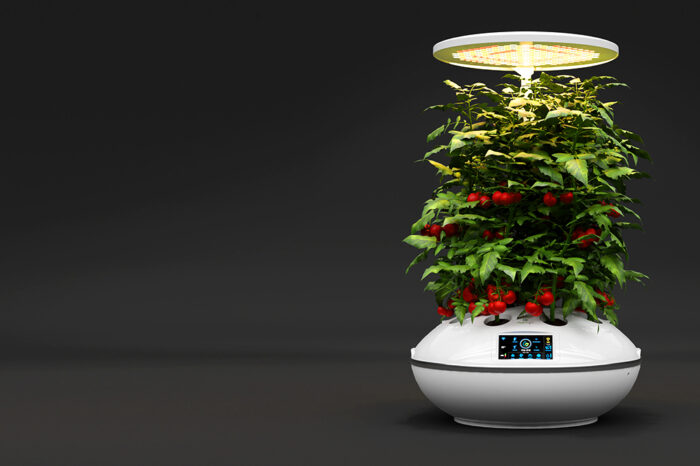 {Smart garden: Agro2o} No time for gardening? Let your smartphone take care of it